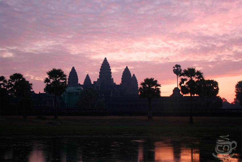 Ангкор Ват, 2013